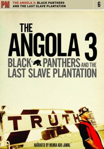http://3blackpanthers.files.wordpress.com/2009/02/a3dvd_frontcover.jpg?w=208&h=300